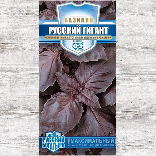 Базилик Русский гигант фиолетовый Гавриш изображение 1 артикул 65201