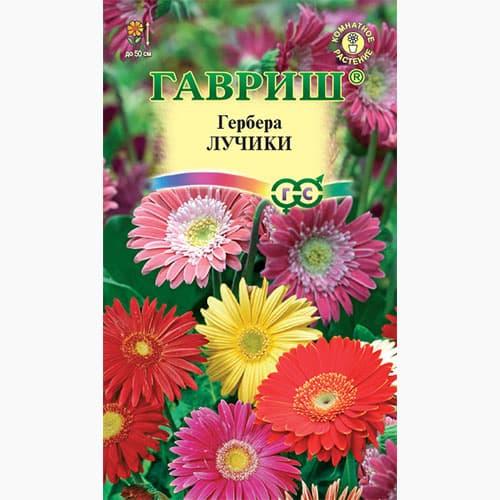 Георгина Яркие помпоны, смесь окрасок Гавриш изображение 1 артикул 66060