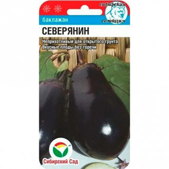 Баклажан Северянин Сибирский сад изображение 8