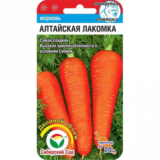 Морковь Алтайская лакомка Сибирский сад изображение 7