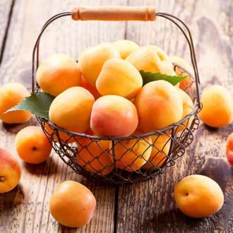 Персик-абрикос Медовый месяц изображение 7