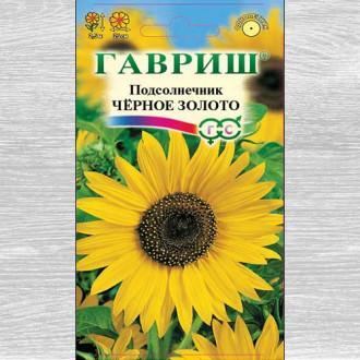 Подсолнечник декоративный Черное золото Гавриш изображение 5