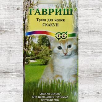 Трава для кошек Скакун Гавриш изображение 3