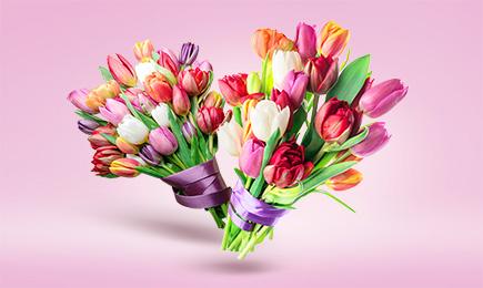 ШОУ тюльпанов! | Беккер